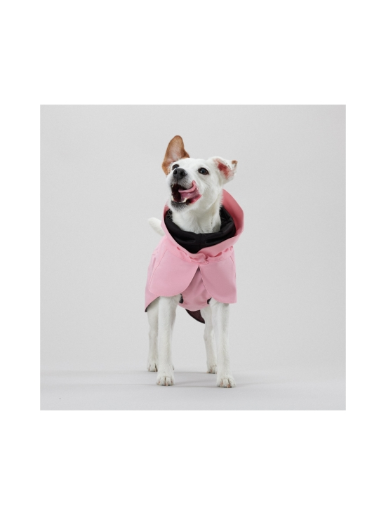 PAIKKA - Visibility Raincoat Lite Pink for Dogs - 4 | Stockmann - photo 2