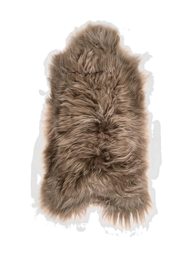Islannin pitkäkarvainen lampaantalja