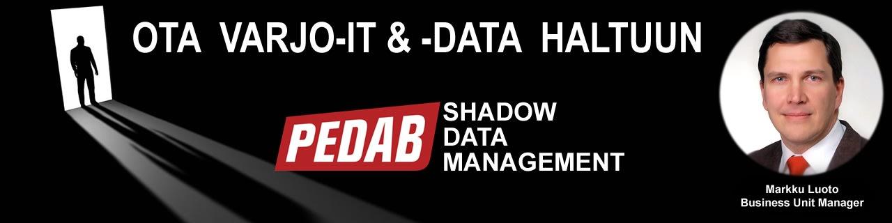 Ota varjo-IT & data haltuun!