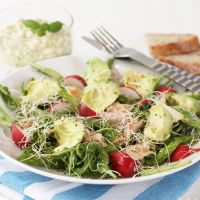 kyllingsalat_m_avocado_og_creme_fraishe