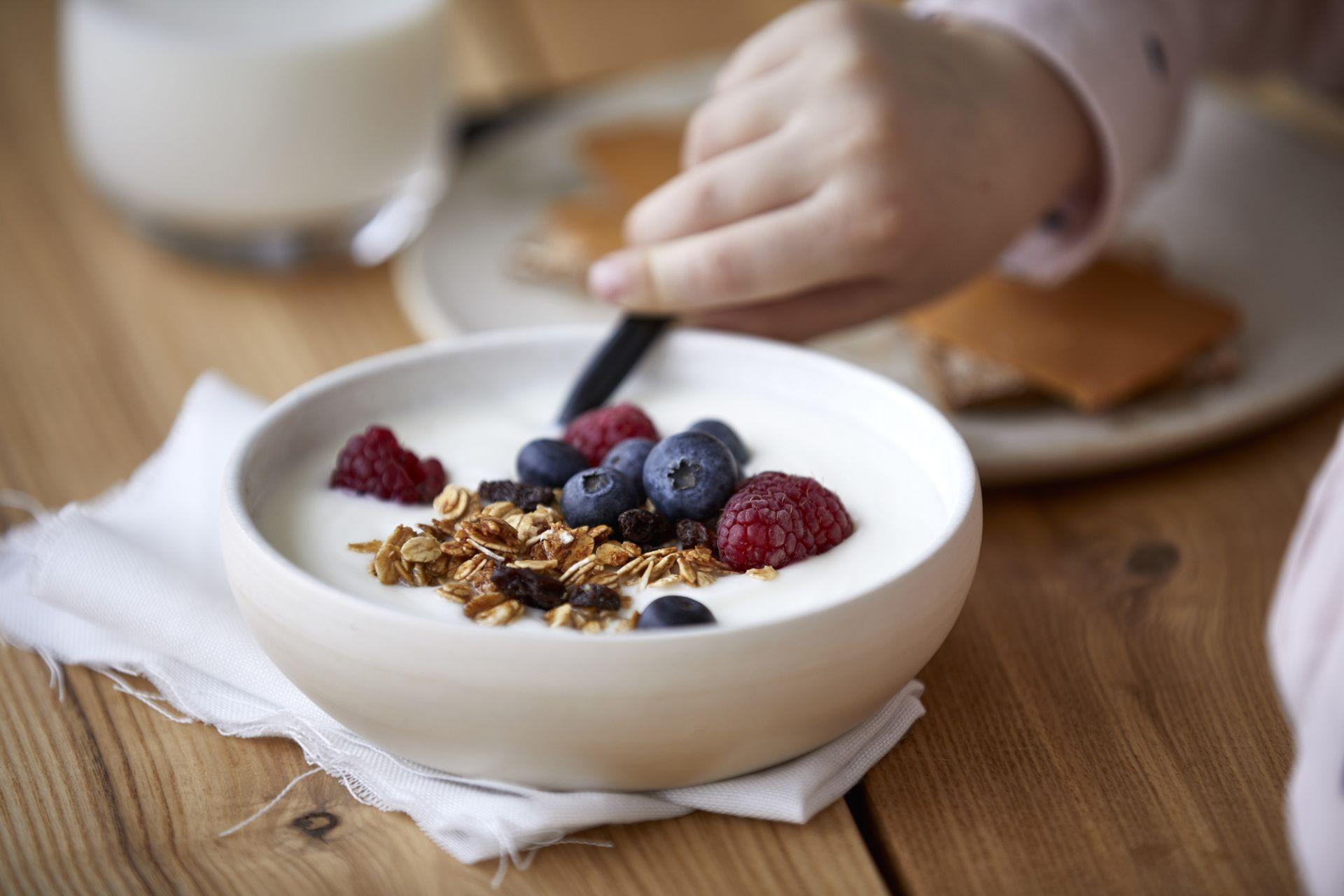 probiotiske bakterier yoghurt