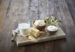 Økologisk mat: melk, cottage cheese, rømme og smør