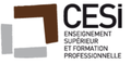 Cesi DG Paris