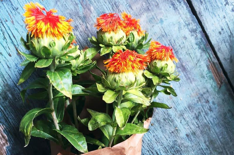 cla safflower oil benefits and side effects