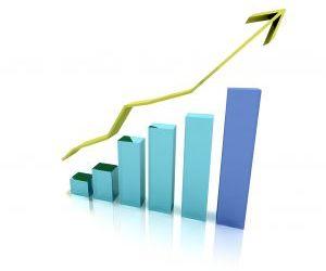 צעדים ראשוניים להקמת עסק