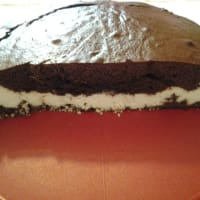 Chocolate cake and coconut