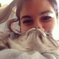 Daniela Mastrorocco avatar