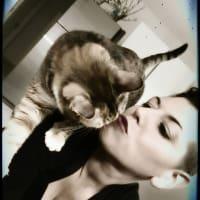 Lulu Veganstyle avatar
