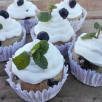 Oatmeal and Blueberry Cupcakes