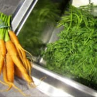 Pesto de hojas de zanahoria y nueces con el aroma del cardamomo paso 3