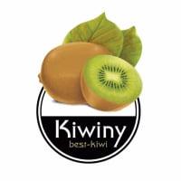 Kiwiny Ricette avatar
