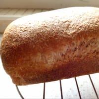 Pan integral con leche de arroz con levadura natural paso 7