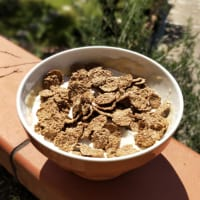 Porridge in microonde con cereali e yogurt