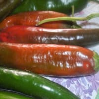 Cruasanes chile pimientos Anchoas saladas paso 1