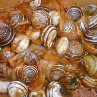 Snails in Tomato and Onion Pulp