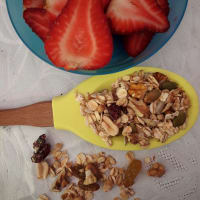 Homemade granola with frying pan