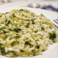 risotto de repollo y parmesano paso 8