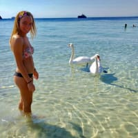 Flavia Ciolli avatar
