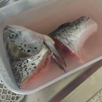 salmón hilada con nuevas patatas y gratinado de setas sin pan paso 4