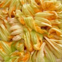 Focaccia Stracchino And Zucchini Flowers step 8