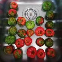Peperoni tondi ripieni step 1
