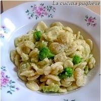 Pasta with broccoli cream and stracchino cheese