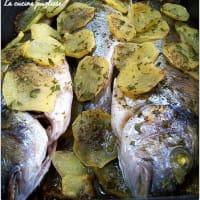 Sea bream to the Apulian