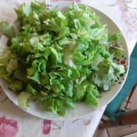 Tonno e insalata cotta al pomodoro step 1