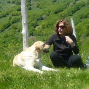 Francesca Vassallo avatar