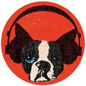 Roberto Grilli avatar
