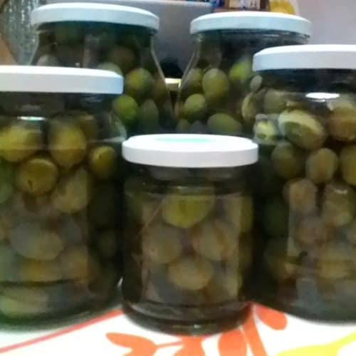 De oliva en el curtido de soda
