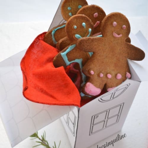 Omini gingerbread gluten-free and lactose-free