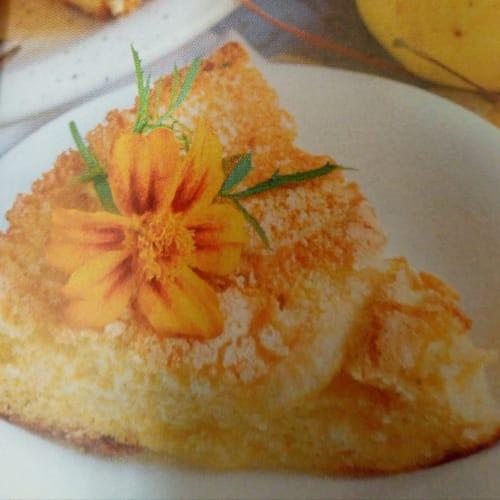Vegan apple and chia seed cake