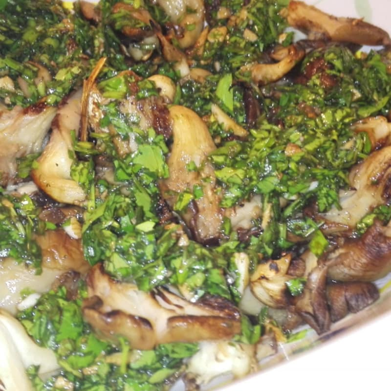 Oyster mushrooms in green sauce