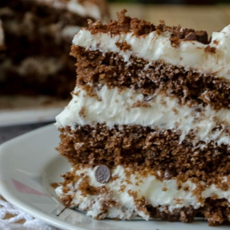Chocolate cake with milk cream and chocolate chips