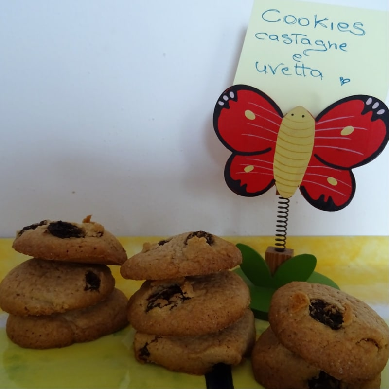 Gluten Free Cookies With Chestnuts And Uvetta Flour
