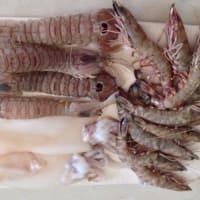 Foto preparazione Lumaconi al ragu di pesce