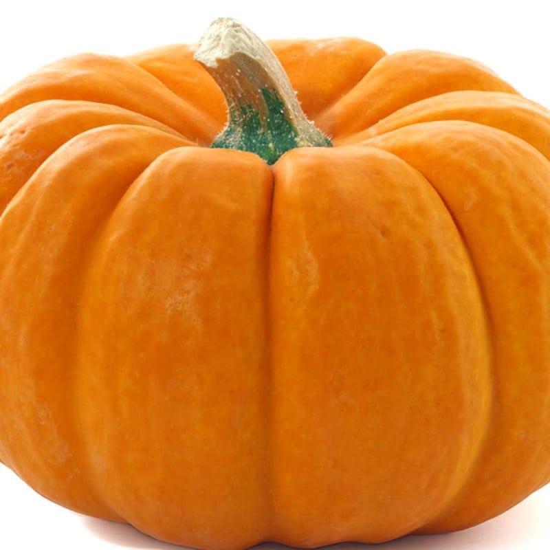 Foto Ricetta Slices of pumpkin baked