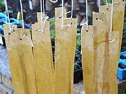 Flypaper strips