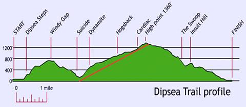 Dipsea Trail Profile