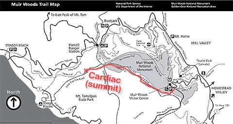 Dipsea Trail to Cardiac Hill
