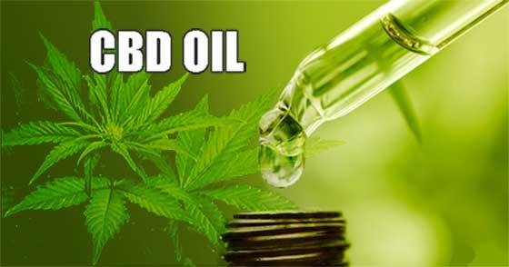 CBD Oil with Medicine Dropper