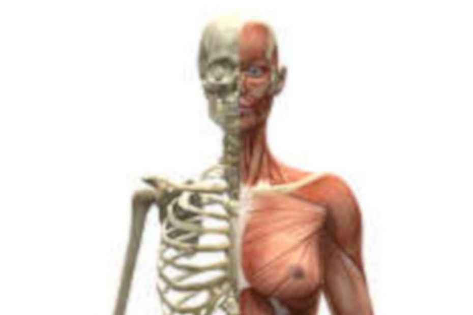 Fibromialgia - doença dolorosa - destacada