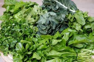 Vegetais de folhas verdes