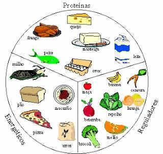Tipos de alimentos: proteínas, energéticos, reguladores