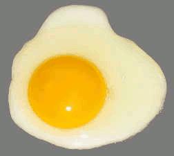 Ovo, alimento completo