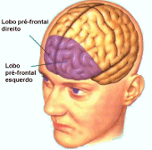 DDA/TDAH e o córtex pré-frontal