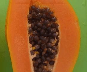 Mamão, uma delícia e muitos benefícios