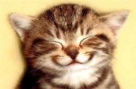 Sorria. Trate bem seu coração.