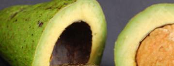 abacate como antiinflamatório